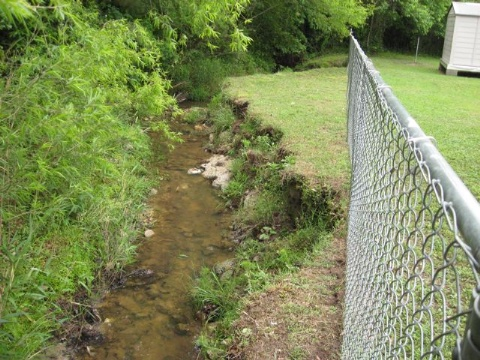 Streambank Restore Before