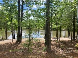 NE Pond-Trail 5-2020